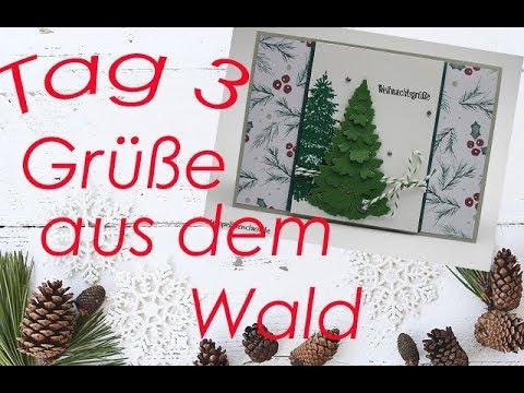 10 tage bis weihnachten tag 3 gr e aus dem wald mit produkten von stampin up youtube. Black Bedroom Furniture Sets. Home Design Ideas