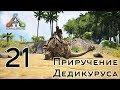 ARK Survival Evolved (The Island, одиночка) #21 Приручение Дедикуруса