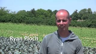Ploch Farms: QR Spot