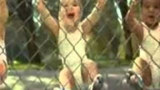 YouTube- TENU GADDI CH LE JAWWAN NE MAIN LA NU DILJIT NEW SONG MIX IN BABY DANCING VIDEO_mpeg4.mp4