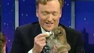 Late Night 'Jarod Miller and the Most Dangerous Animals 5/18/2001