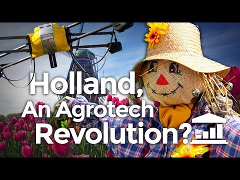 Why The NETHERLANDS is the World's AGRICULTURE leader? - Vis