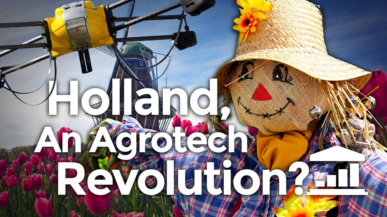 why-the-netherlands-is-the-world-s-agriculture-leader-visualpolitik-en