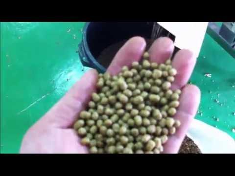 Fish Feed Making Machine -- Screw Extruder Machine Series