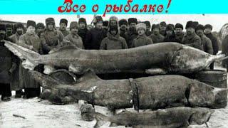 Рыболовство на Оке с древности до наших дней!!!
