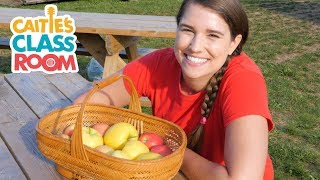 Gambar cover Let's Go To An Apple Orchard | Caitie's Classroom | School Field Trip For Kids