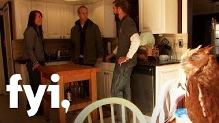 Tiny House Nation: The Birds' Nest  S2, E6  | Fyi