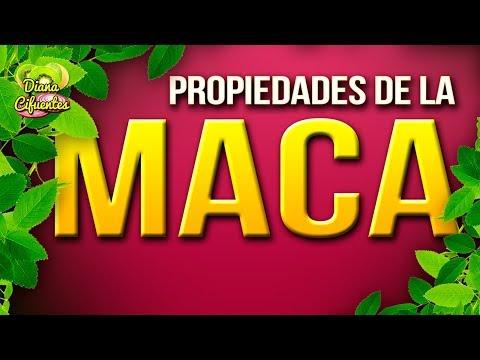 Propiedades De La Maca - Beneficios De La Maca - Contraindicaciones De La Maca