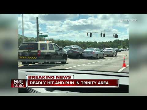 Fatal hit-and-run crash under investigation in Pasco County