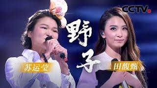 歌曲《野子》演唱:田馥甄 苏运莹   CCTV