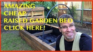 How To Build A Raised Garden Bed. The Ultimate Pallet Wood Vegetable Garden.