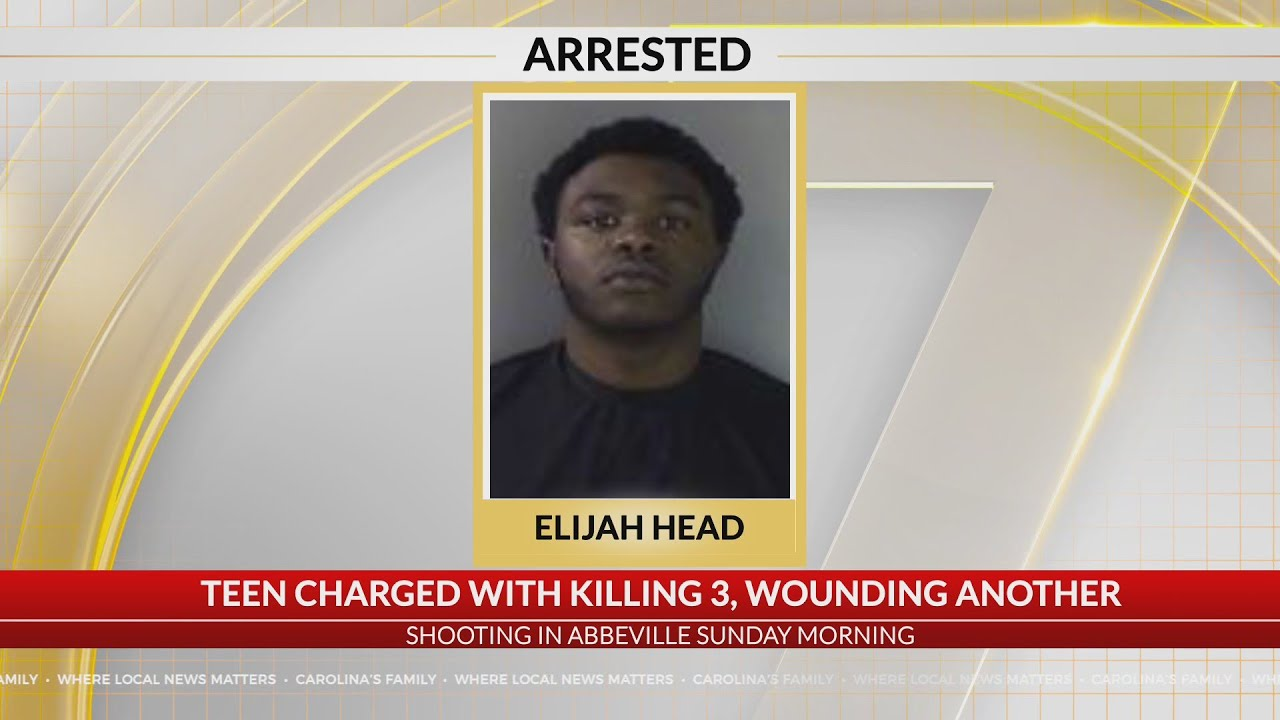 Teen charged with killing 3, wounding another in Abbeville Co  shooting