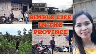 American Wife: BAHAY SA PROBINSYA + FARM AGAIN