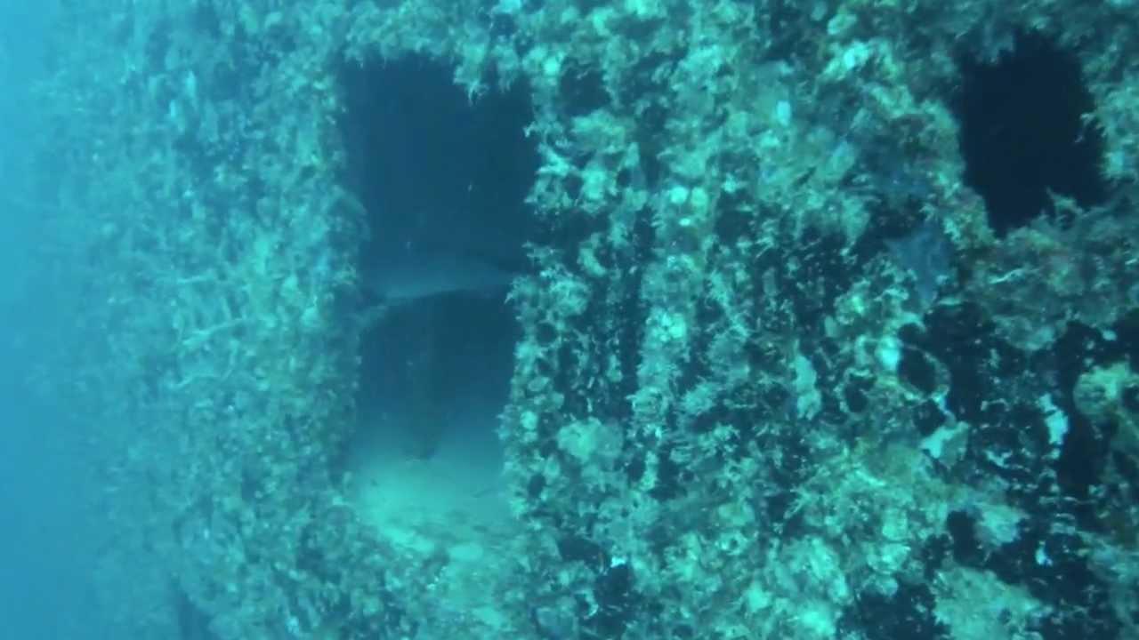 Spiegel Grove Deaths Spiegel Grove Key Largo fl