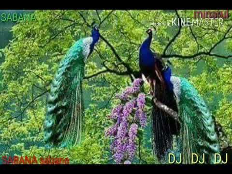 DJ Boro Jotoy Hoi Choto Hoy Jama((((HD Song Video