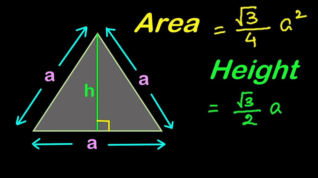 Find Area and Height of an Equilateral Triangle  Mensuration in HINDI   हिंदी