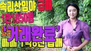 임야매매 (급매) 속리산인근 야산으로 평당1만3천 충북…