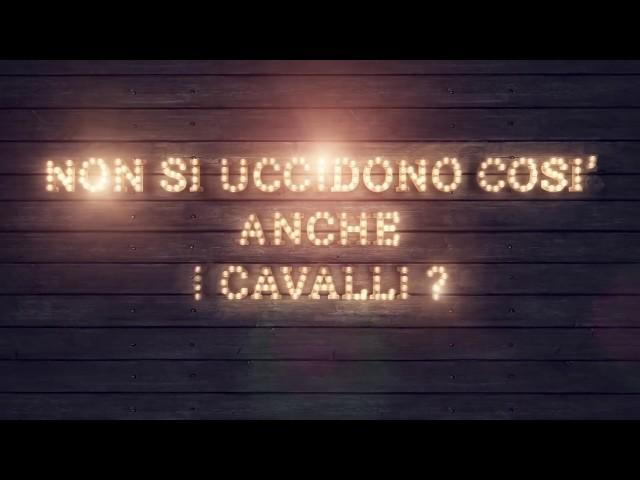 NON SI UCCIDONO COSI' ANCHE I CAVALLI? - trailer