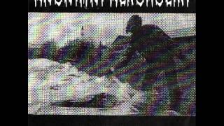 Anonimni Alkoholiki - Nogum U Muda 1996 (Slo Grindcore Punk)