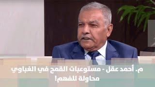 م. أحمد عقل - مستوعبات القمح في الغباوي ... محاولة للفهم!
