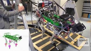 Wrench based Feasibility Analysis for the Online Trajectory Optimization of Legged Robots