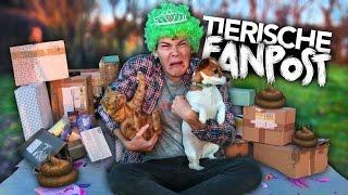 TIERISCHE FANPOST AUSPACKEN mit Hund & Katze | Joey