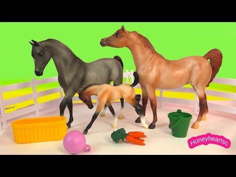 Breyer Mare Mom Foal Baby Stallion Dad Champion is Born Horse Playset Breyers Video