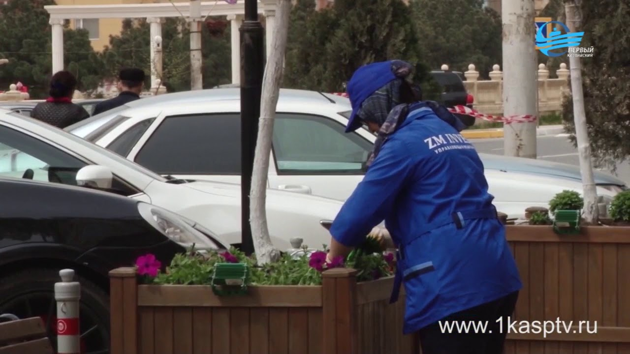 Убрали мусор, высадили деревья, очистили придомовые территории, теперь основная задача сохранить чистоту!