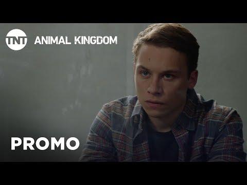 Animal Kingdom: Shock  Season 3 Premieres This Summer   TNT