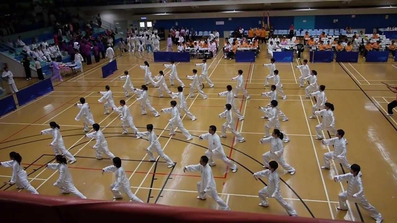 香港冷先鋒武術學院 團體表演42式太極拳 - 中華武術慶回歸2013 - YouTube