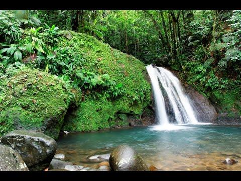 3 H Relax - Bruit de l'eau -  chute d'eau relaxation cascade - spa - bruit blanc relaxant