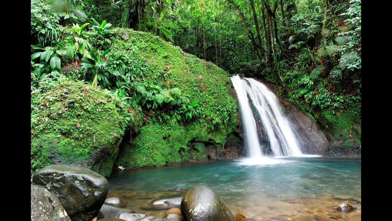 3 h relax bruit de l eau chute d eau relaxation cascade spa bruit blanc relaxant