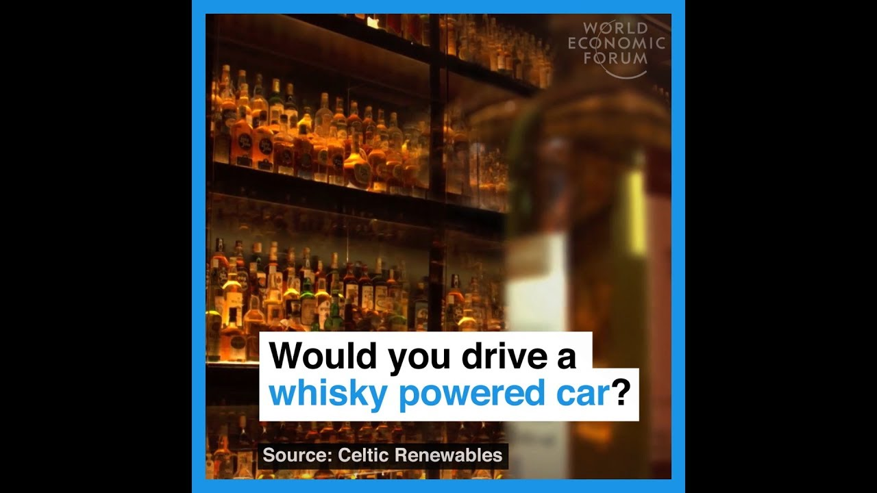 Would you drive a whisky powered car?