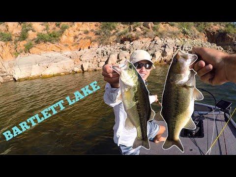 The BITE Is On At Bartlett Lake!! | Arizona Bass Fishing