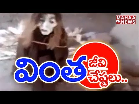 Alien Video Goes Viral On Social Media   Karnataka   Mahaa News