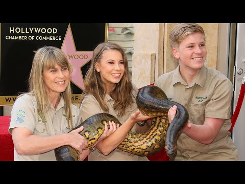 Bindi Irwin On What Late Father Steve Irwin Would Think of Her Boyfriend Chandler Powell Exclusi…