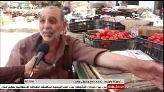 آراء المواطنين في أسعار الخضراوات والفواكه