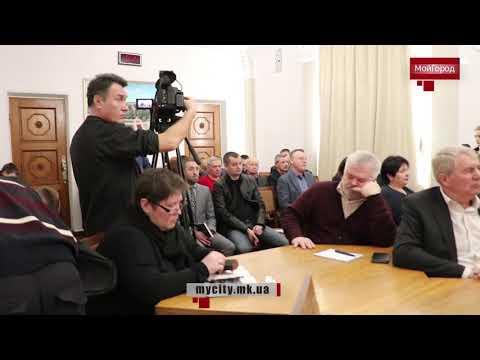 Moy gorod: Мой город Н: первый вице-мэр Крыленко о ролике про вежливость в маршрутках