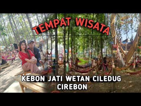 Wisata Kebun Jati Ciledug Cirebon