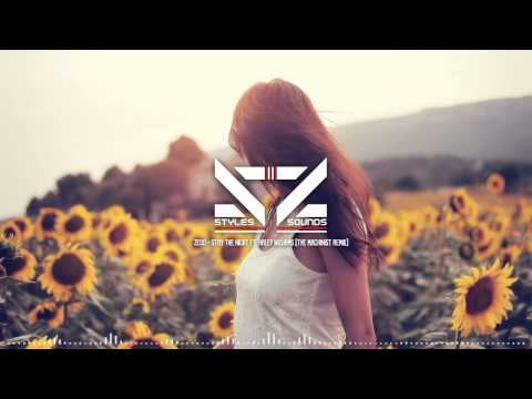 Zedd - Stay The Night Ft. Hayley Williams (The Machinist Remix)