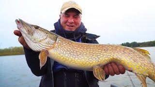 Рыбалка на ОГРОМНЫХ ЩУК теперь доступна каждому Вот КАК это сделать