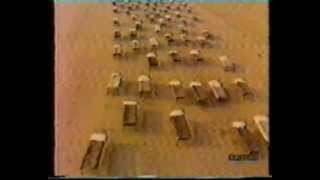 Pink Floyd 1987 Beach Beds of A Momentary Lapse of Reason album