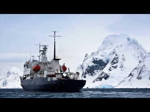 По каким-то странным причинам все руководители бегут из Антарктиды!