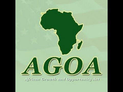 Capitalizing on AGOA (Part II) - Sheilah Njalaleh