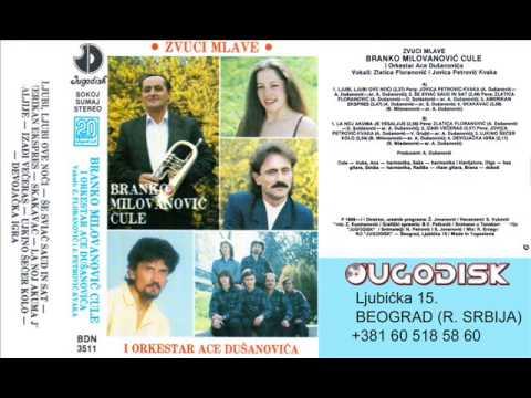 Zlatica Floranovic sa ork Ace Dusanovica - La noj akuma je veselj - (Audio 1989)