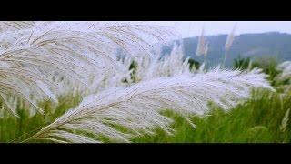 ente gramam എന്റെഗ്രാമം malayalam music video/ kavitha