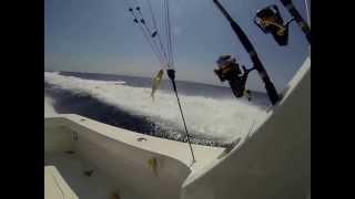 30 knots on a Viking 61 Sportfish