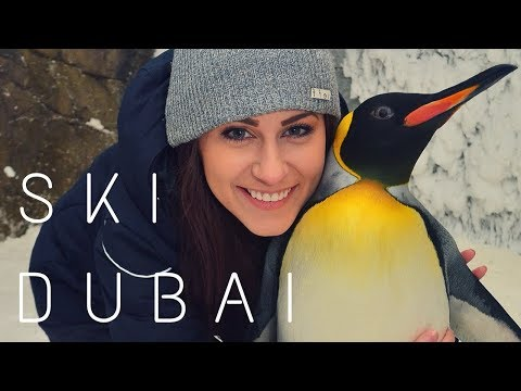 Ski Dubai – Indoor Skiing & Penguin Encounter