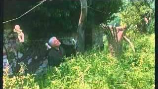Silvano Agosti - Uova di garofano - Trailer