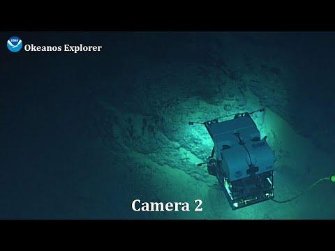 Camera 2 -  2021 North Atlantic Stepping Stones